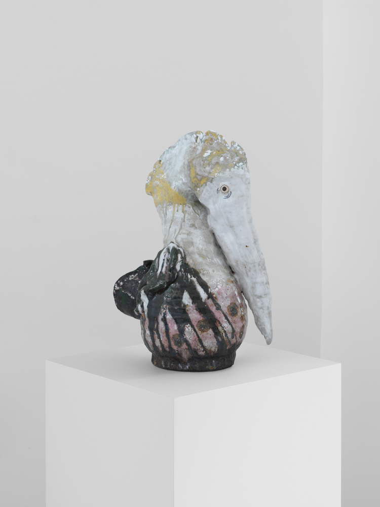 Yellow Bonnet Pelican, 2018